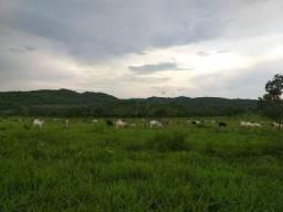 Fazenda na BR-364na Serra de São Vicente à venda, 10000000 m² por R$ 9.000.000 - Zona Rura