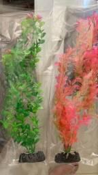 Título do anúncio: Plantas de Aquário