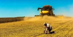 Título do anúncio: LN - Investimento Agropecuário: propriedade, maquinas, capital de giro!