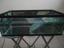 Aquaterrário. LEIA o anuncio 1º