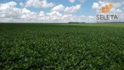 Fazenda rural à venda, zona rural, campo novo do parecis.