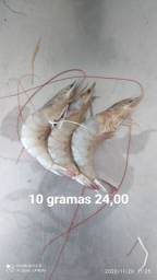 Camarão de 10 gramas
