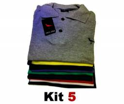 Kit com 5 Peças Camisas Masculinas Gola polo Original Mult Marcas