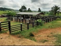 Fazenda em ITUPIRANGA-PA