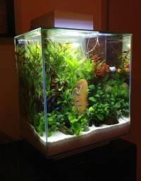 Aquario cubo 30x30x30 + Filtro 400 litros hr