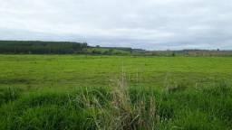 453 hectares a 40 minutos centro de Ipatinga