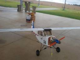 Piper Clipped Wing