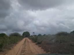 Fazenda na região de vera cruz com 45 hectares