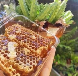 Vendo favo de mel, entrega em Aracruz