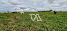 Fazenda plana à venda, 170 hectares por R$ 4.900.000,00 - Matupá/Mato Grosso