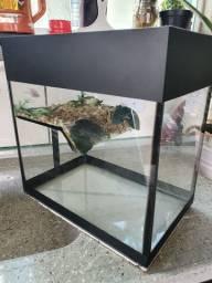 Aquaterrario para tartaruga barato