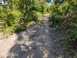 Fazenda 234 hectares bruta em Formoso do Araguaia