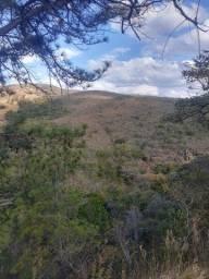 Ótima Fazenda Entre Baependi e Cruzília-Mg, com 29 Alqueires
