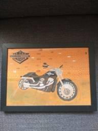 quadro moto harley