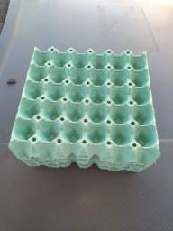 Cartela de ovo vazia