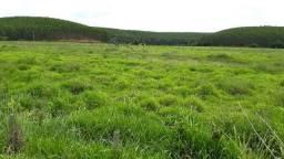 146 hectares terra a 35 minutos do centro de Ipatinga
