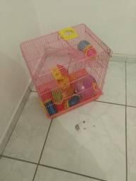 Casinha hamster