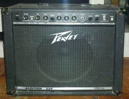 Peavey Audition 110 25W