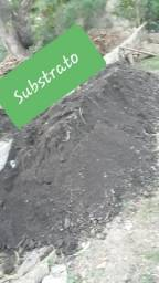 Terra vegetal 100% Substrato
