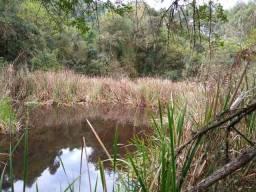 Terreno Rural de 8,5 alqueires à venda na cidade de Senador Amaral no Sul de Minas