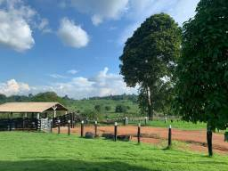 Vende-se Fazenda Vila Marinês 53 km de Parauapebas!