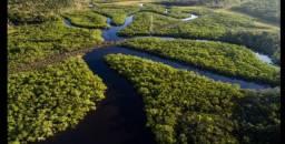 Amazônia Reserva Legal ou Compensação Ambiental