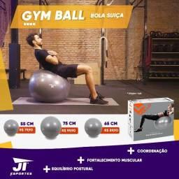 Bola Suiça Pilates Com Bomba Yoga Abdominais  Nova JT Esportes