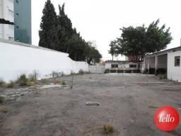 Terreno para alugar em Santa paula, São caetano do sul cod:186432