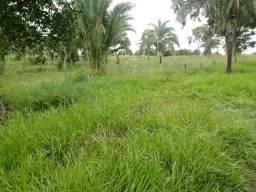 Fazenda para Pecuária em Livramento
