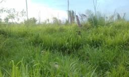 Vendo terra em Rorainópolis Roraima 571 alqueiros com 80 formado.