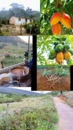 Fazendinha 27 hectares so 65 mil toda cercada alqueires terreno sitio