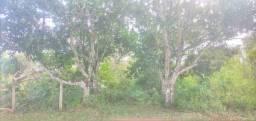 Título do anúncio: Terreno 20x50 em aldeia