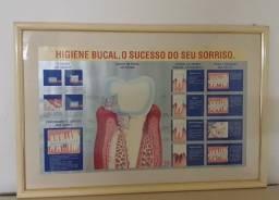 Quadro de odontologia, explicando o que é  doença  periodontal e gengivite
