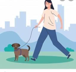 Trabalho com passeio de cães