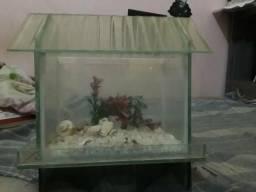 Vendo ou troco aquário (Leia)