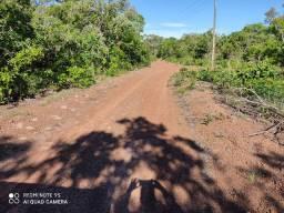 Fazenda bruta em Formoso do Araguaia 92 hectares