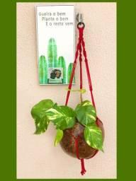 Planta jiboia+ vaso de arte em cabaça + lindo suporte em macramê
