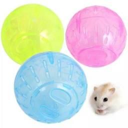 Kit para hamsters 3x1 promoção final