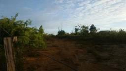 Fazenda para soja 598 Alqueires, e planta 400 Alqueires