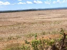 695 hectares, 495 hectares aberta e argilosa, soja e pecuária, Poconé-MT