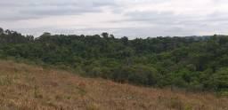 3 alqueires de terra minas gerais