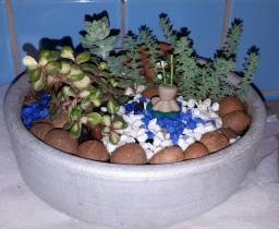 Arranjos, mini jardim e terrarios