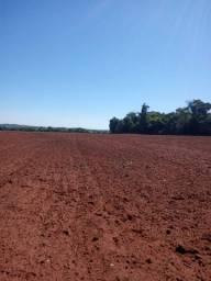 Título do anúncio: Fazenda 109 Alqueires em Jataí-GO