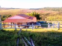 230B/Ótima fazenda de 113 ha com ótima sede e ótima para agricultura e pecuária