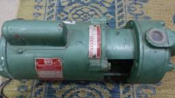 Bomba de Agua Schneider - 1/4 CV