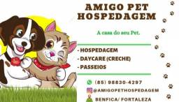 Hotel Amigo Pet