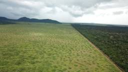 Fazenda 20.250 Hectares, Santa Terezinha -MT
