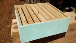 Caixa abelhas Apis