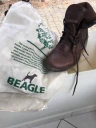 Coturno beagle