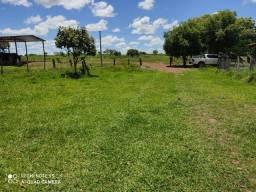 Fazenda em Gurupi 290 hectares